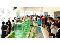 Thị trường địa ốc TP. HCM: Cuộc sàng lọc trong giai đoạn mới