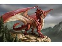 The Last Dragon | A Fantasy Made Real