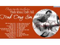 Album Độc tấu Guitar Tình khúc bất hủ của NS Trịnh Công Sơn