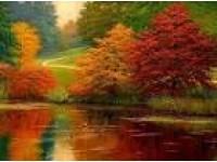 nhin những mùa thu đi