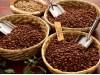 Xuất khẩu cà phê sẽ đạt 3 tỷ USD trong tháng 10